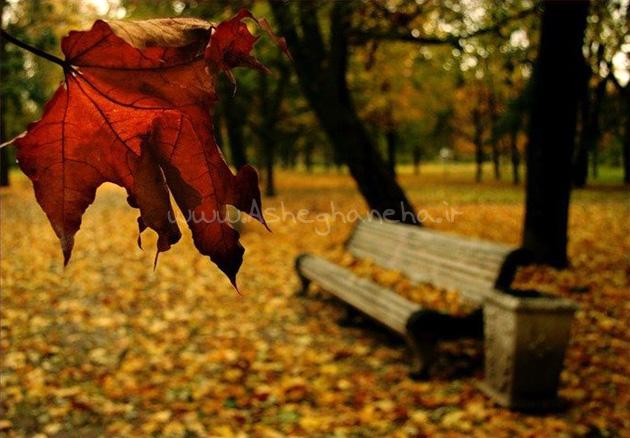 پاییزک