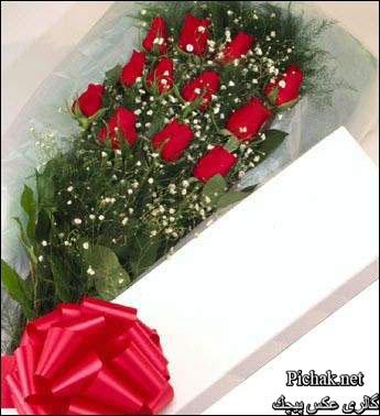 عکس گل زیبا برای تولد