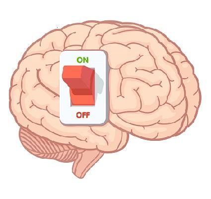 کلید مغز